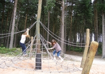 The spiders web, Sherwood Pines, Kings Clipstone, Sherwood Forest