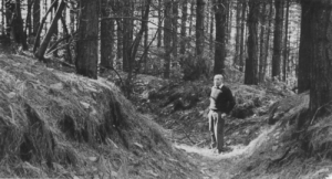 Sherwood Forest-Clipstone-Manchester-trench