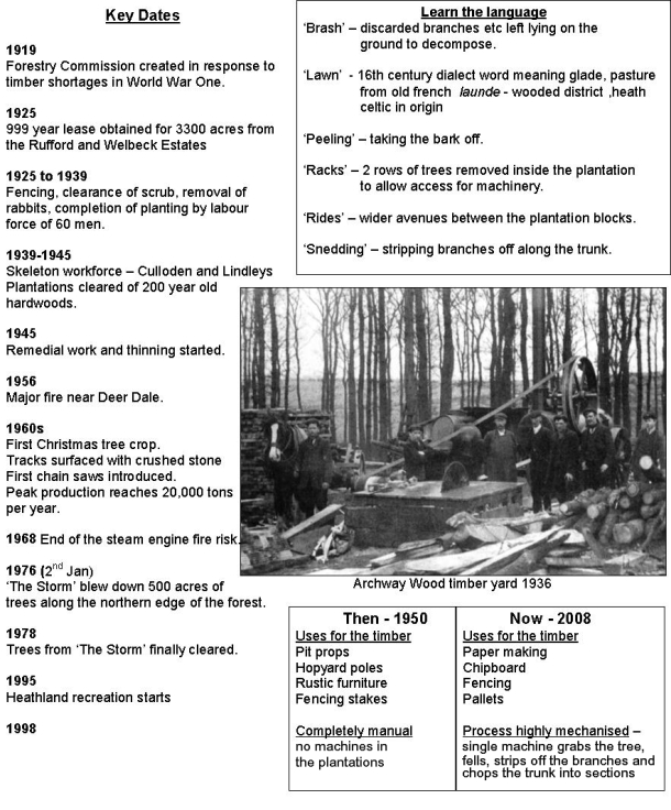 History of Sherwood  Forest's ancient heart.
