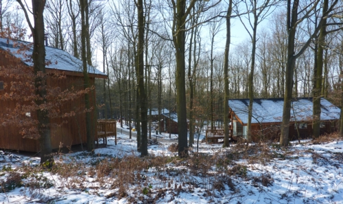 Self Catering Holiday Accommodation Log Cabins Holiday